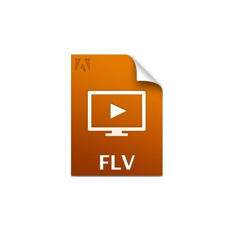 Free FLV Player Windows 7
