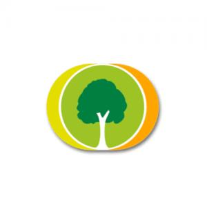 family tree builder online